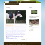Beispiel-Seite für einen Holzkaufmann